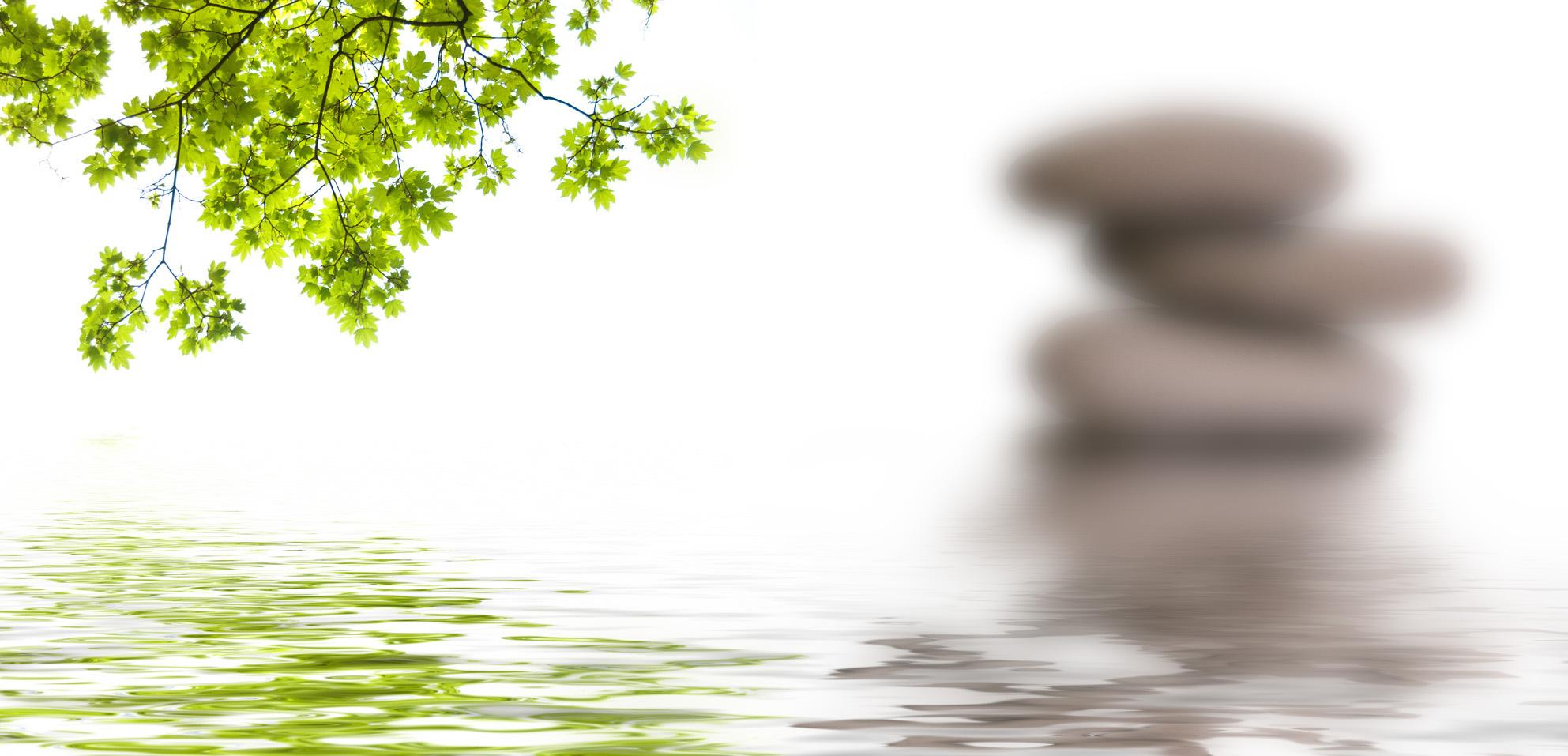 bannire zen, galets et feuilles d'rable